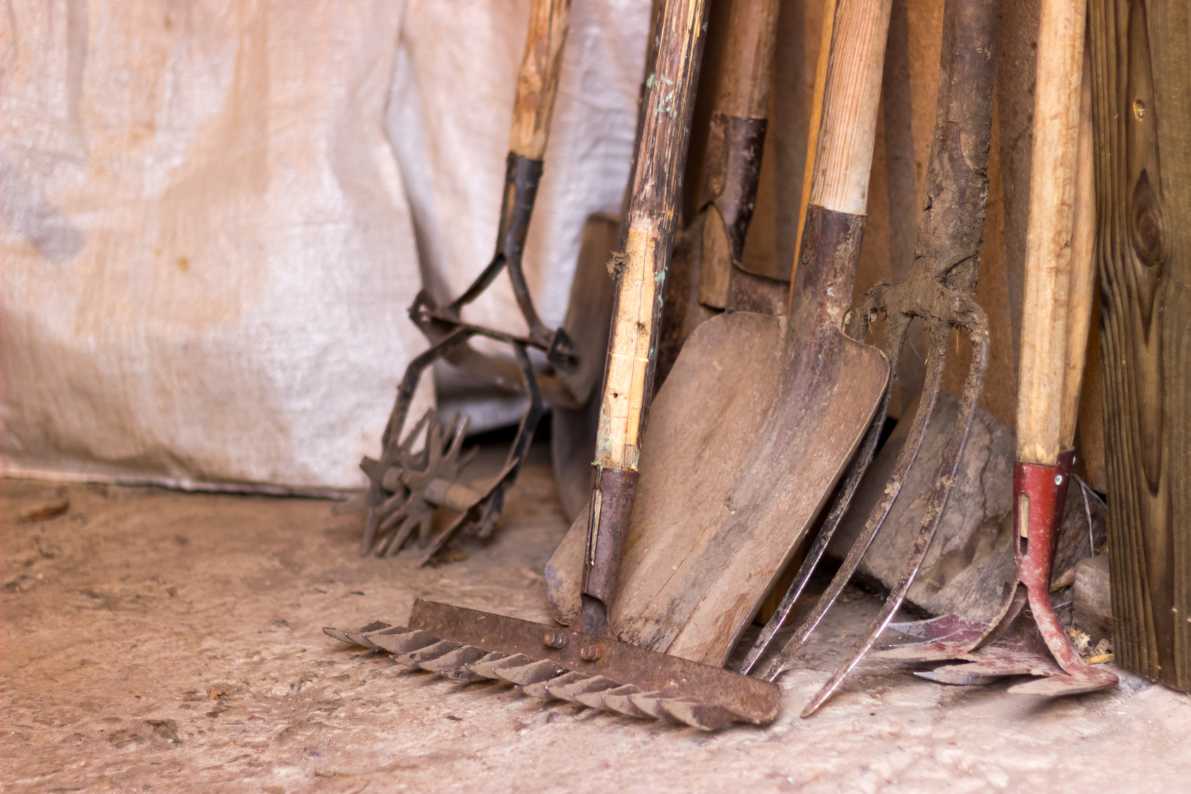 A row of dirty garden tools