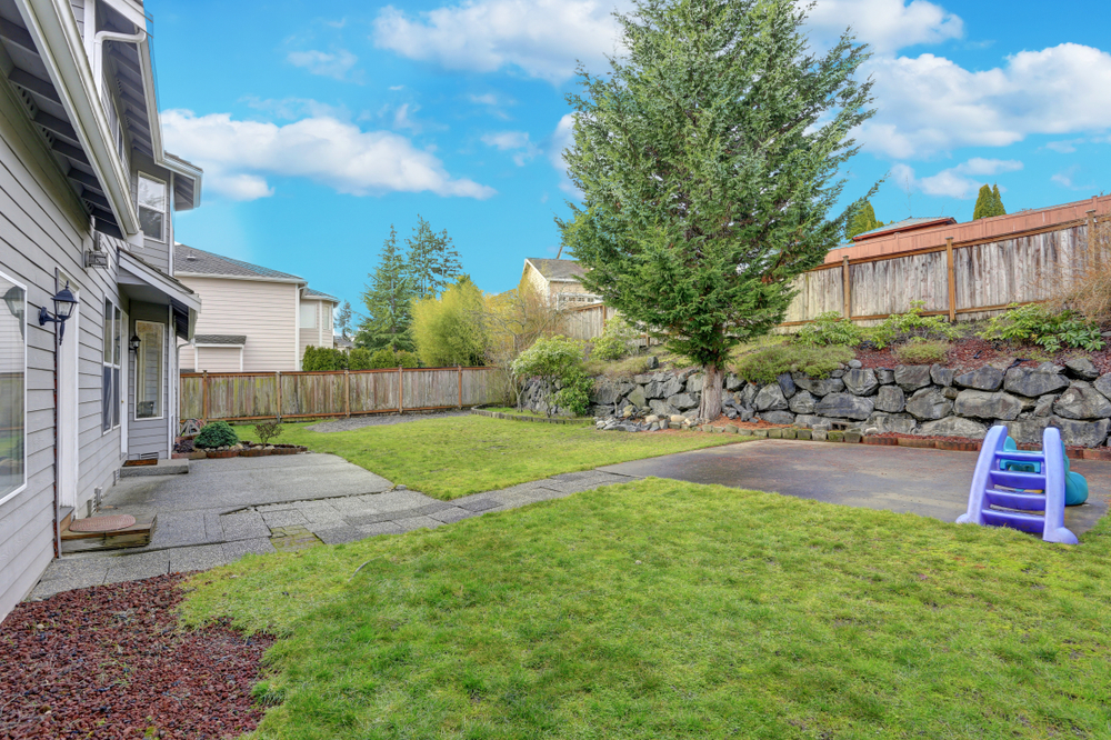 How To Make Backyard More Private 4 ways to make your backyard private | cottonwood landscaping